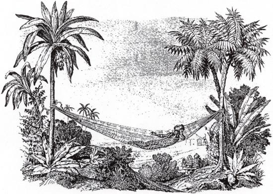 De hangmat werd ontdekt bij de Taino door Columbus