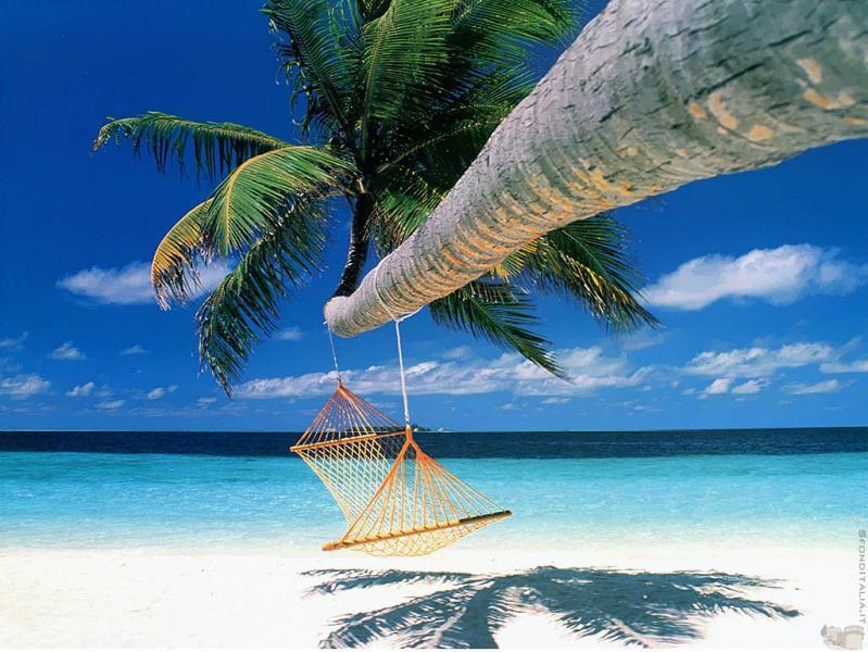 Beste hangmat locaties - Bora Bora